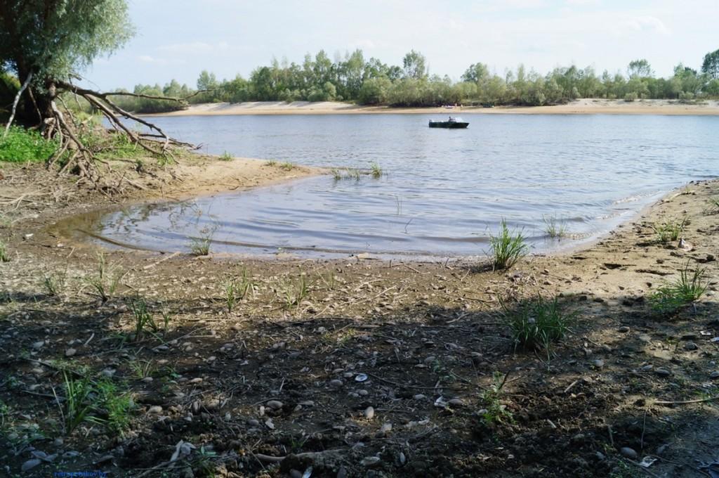 фото заливчика на судоремонтном в Петрикове