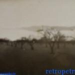 Фото Петриков 80-е, колхозный сад (71retro)