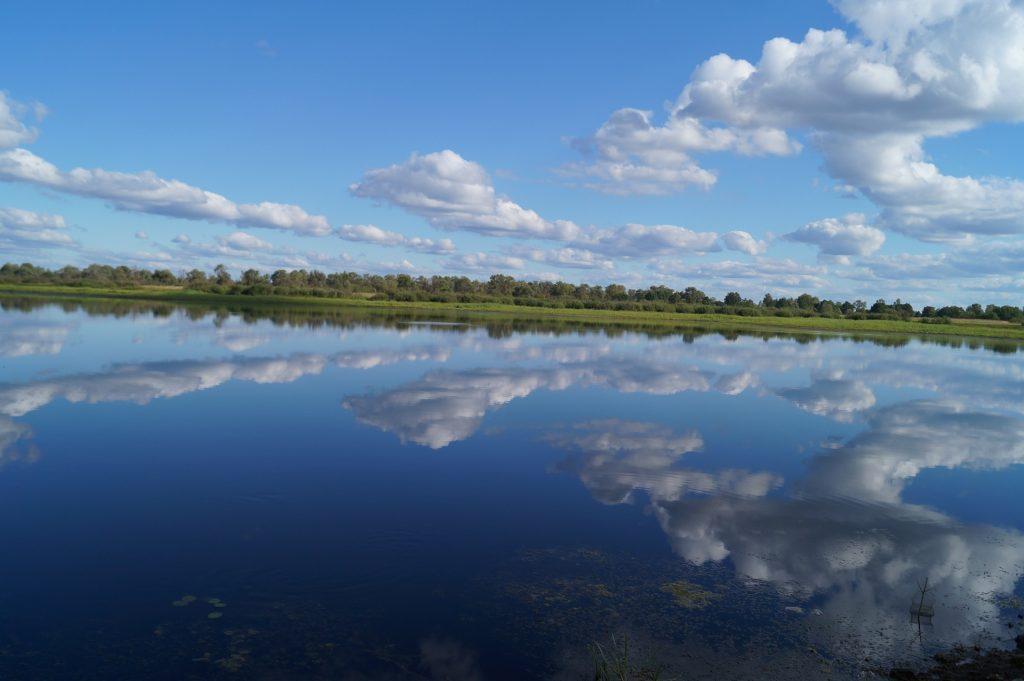 Озеро Старичи в Петрикове