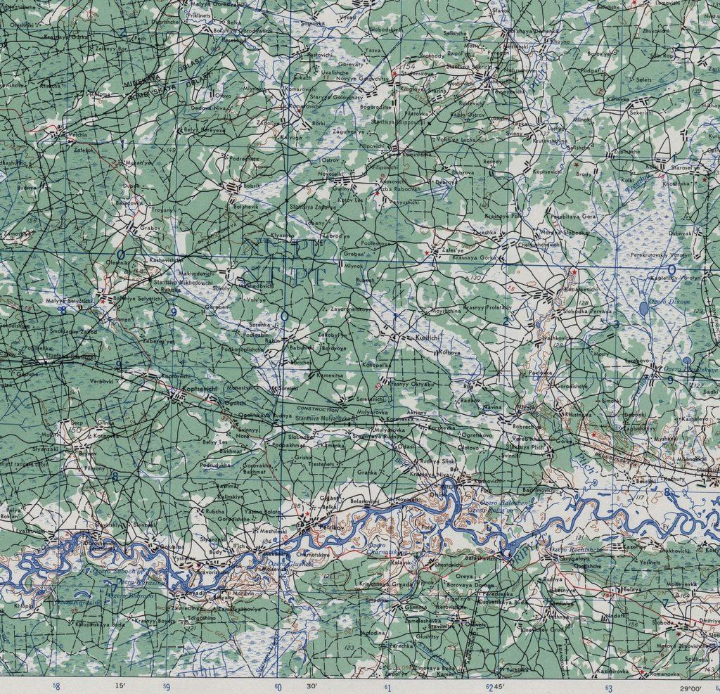 еарта Петриковского района 1944